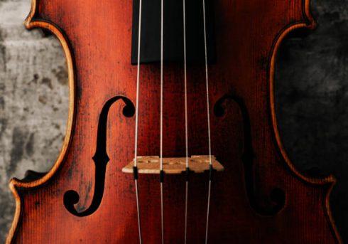 Bando di Audizioni – Viola di fila con obbligo della seconda